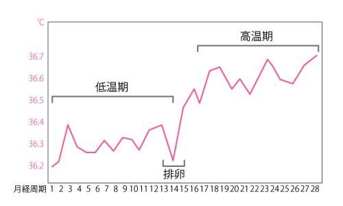 理想的な基礎体温表